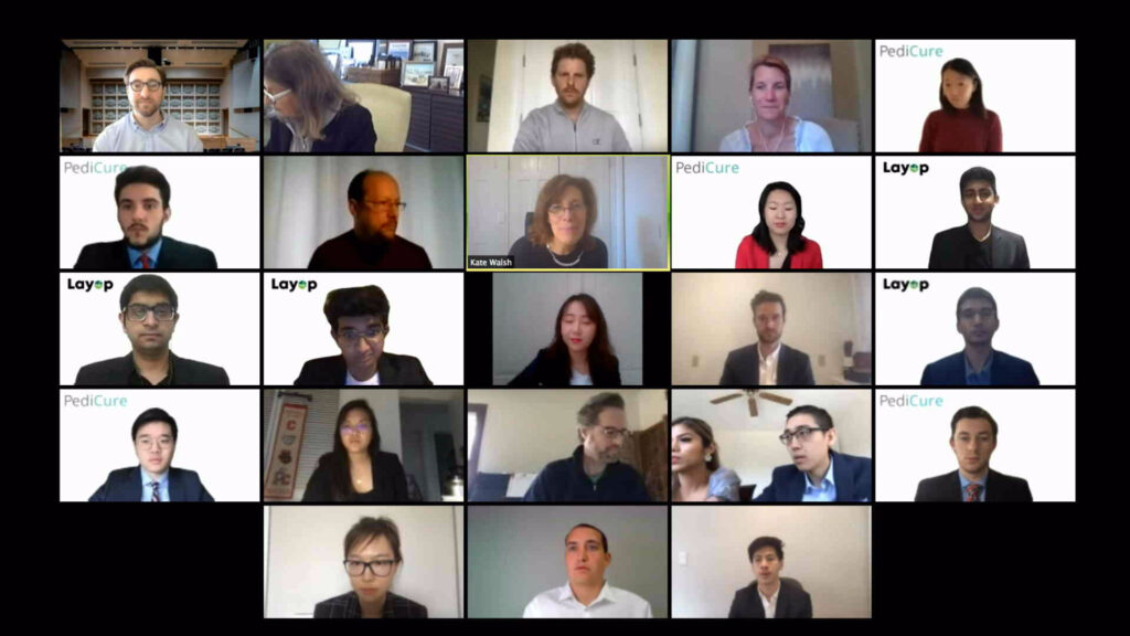 BPC Zoom attendees