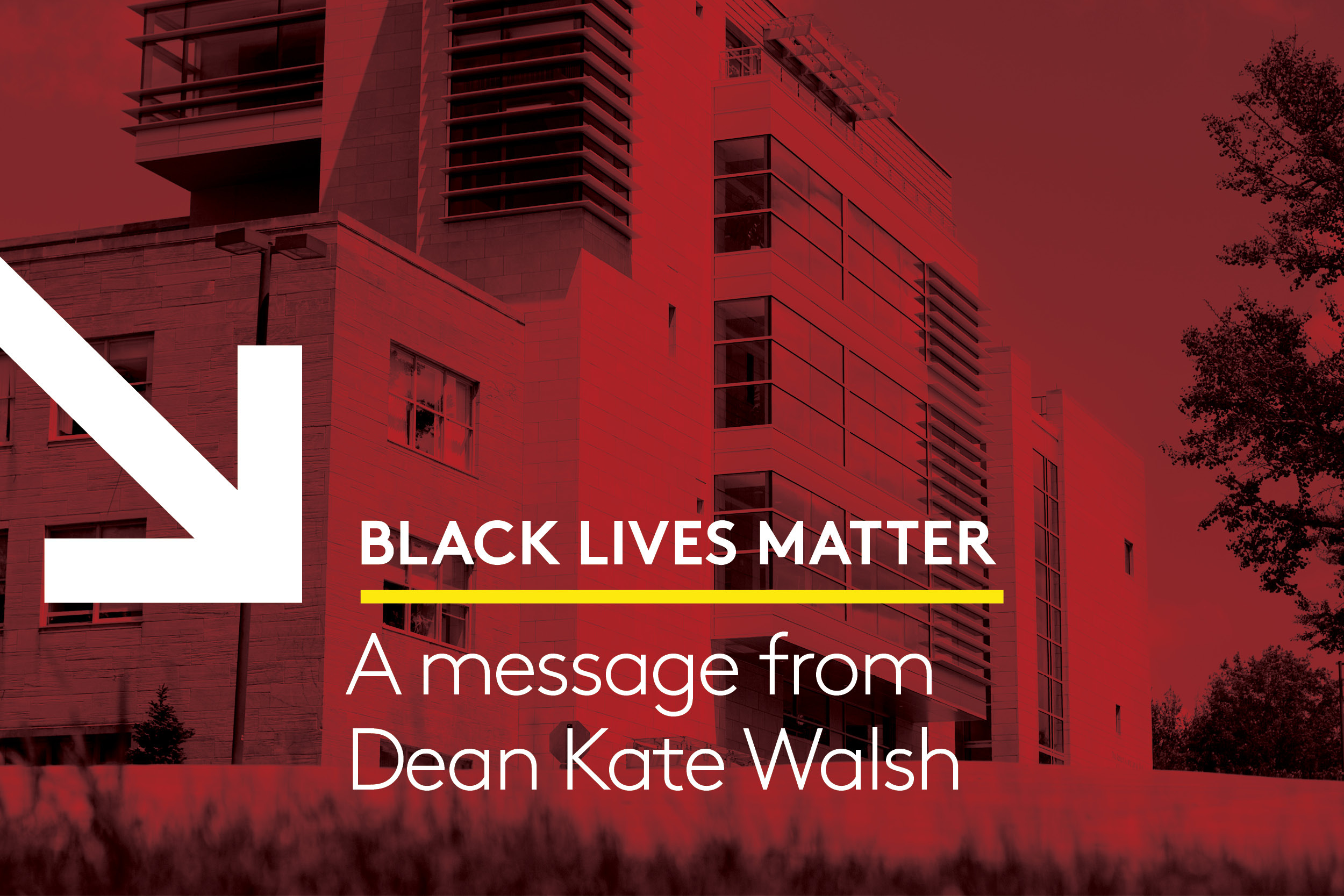 Black Lives Matter: A message from Dean Kate Walsh
