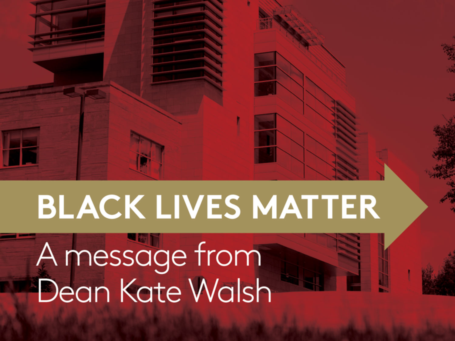 Graphic that says Black Lives Matter A Message from Dean Kat Walsh