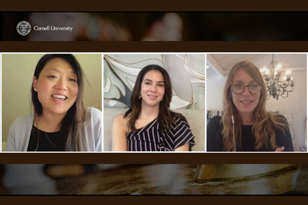 A panel of experts discuss the topic on a zoom style webinar.